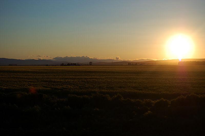 Date setting sun1