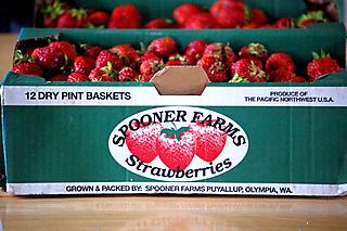 Spooners strawberries1