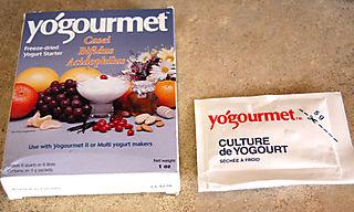 Yogurt culture1