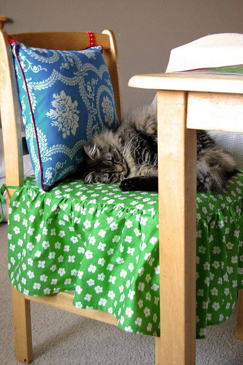 Happy chairs cat01