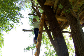 Picking apples tree house01