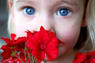 Funny valentines blue eyes2009-02-10