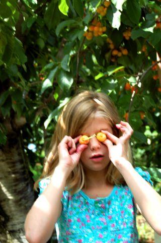 Cherry eyeballs2009-07-24
