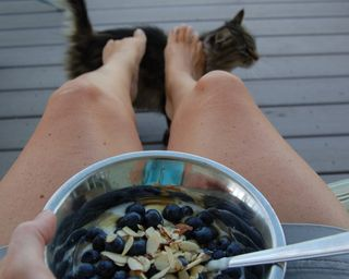 Blueberry breakfast kitty footstool2009-08-09