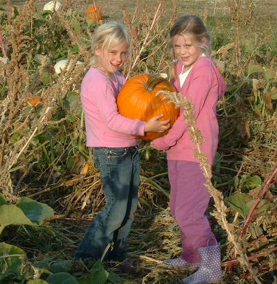 Pumpkin_friends
